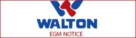 walton-agm-notice-businesshour
